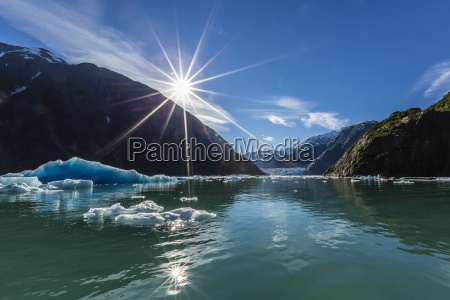 calved glacier ice in tracy arm