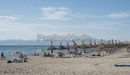 spain balearic islands majorca palma platja