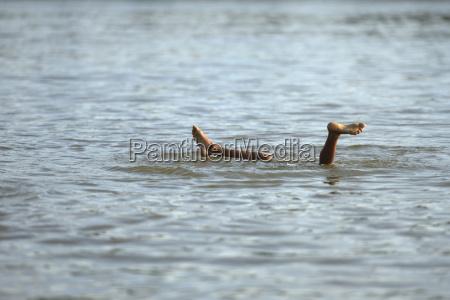 brazylia itaituba pimental nogami nurkowania dzieci