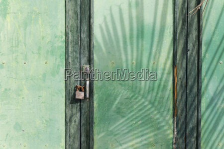 spain canary islands la palma green