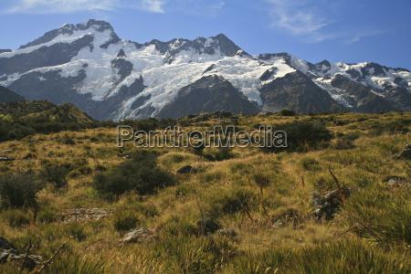 nowa zelandia nieplodnosc lancuch gorski bush