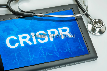 tablet z tekstem crispr na wyswietlaczu