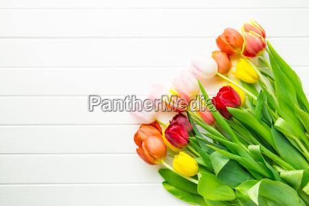 bukiet kwiatow tulipanow