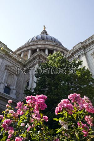 widok z dolu katedry sw pawla