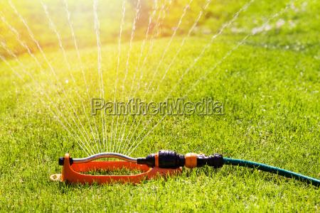 zraszaczy trawnikow sterylizacji wody na zielony