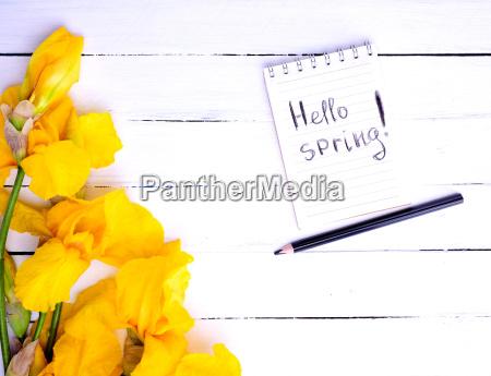 notatnik z napisem hello spring