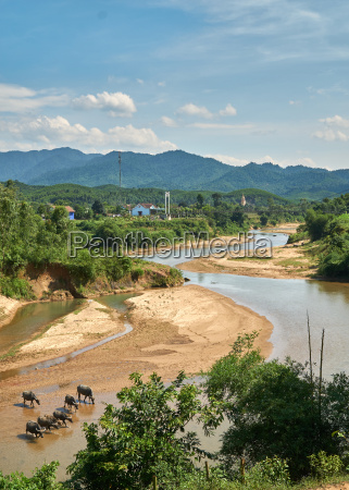 jazda podrozowanie stado river rzeka aqua