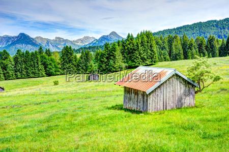gorski krajobraz w regionie allgaeu
