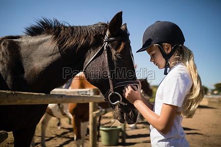 dziewczyna piesci brazowy kon na ranczo