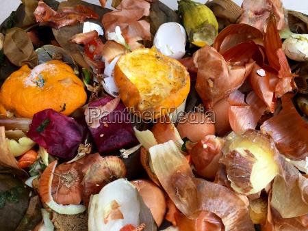 warzywo kompost nudny kupa stos recyklingu
