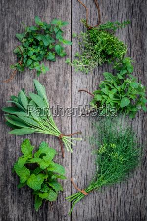 rozne aromatyczne ziola i przyprawy z