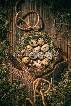 jaja przepiorki w gniezdzie siana