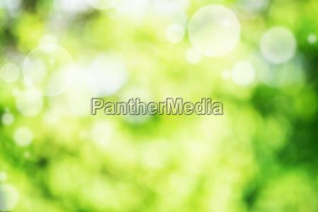 abstrakcja zielony jasny bokeh tlo