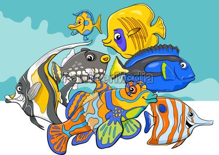 tropikalna ryb morze zycie ryba znaki