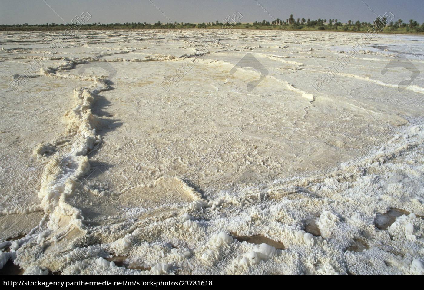 sebkha, , sól, pan, w, oazie, bzemah, - 23781618
