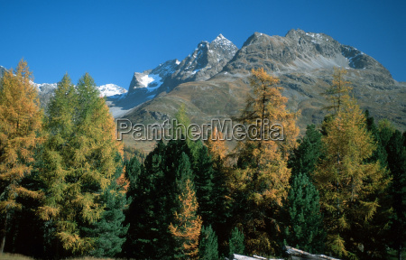 mountains alps european caucasian europe switzerland