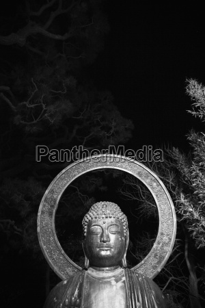 drzewo ogrod ogrodek statula usa budda