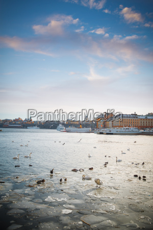 a view of stockholms gamla stan