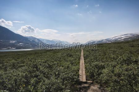 gory drewno drewna pole szwecja na