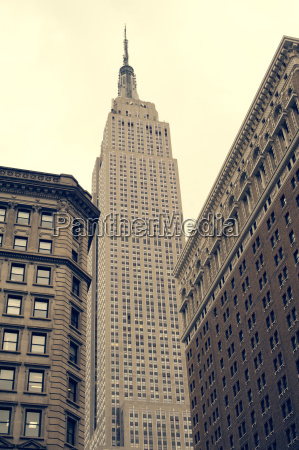 niskiego kata widok empire state building