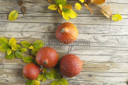 pomarancza pomarancz pomarancze jedzenie wyzywienie zywnosc