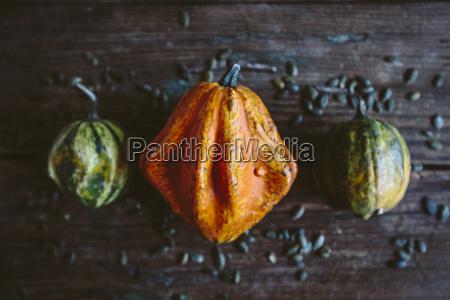 still life pomarancza pomarancz pomarancze makro