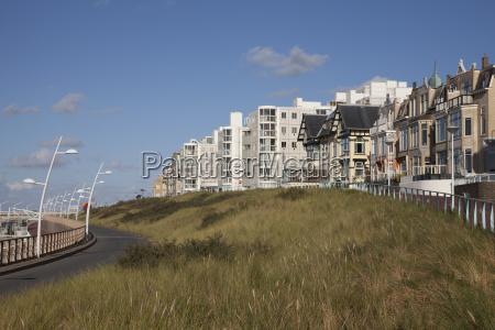 europa trawy stary holandia niderlandy beneluks