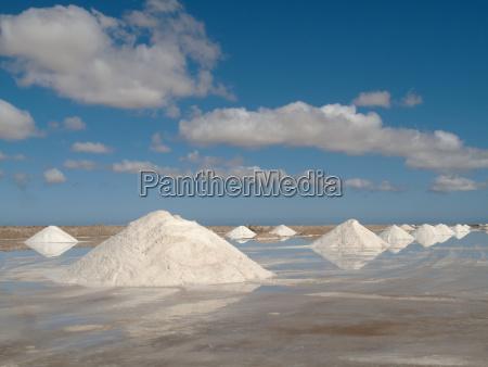 salt works at the salt marshes