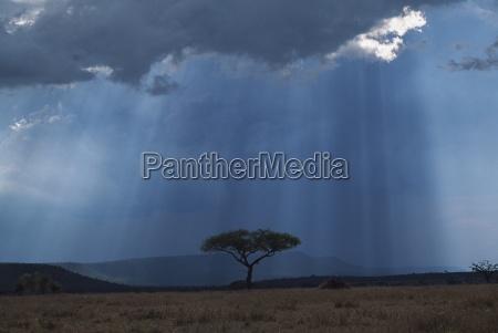 promienie deszczu przechodza przez burze chmura
