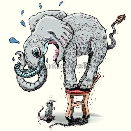 slon z wielkim lekiem myszy