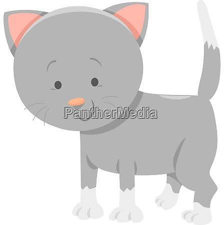smieszne szare kitten kreskowka znak zwierzecy