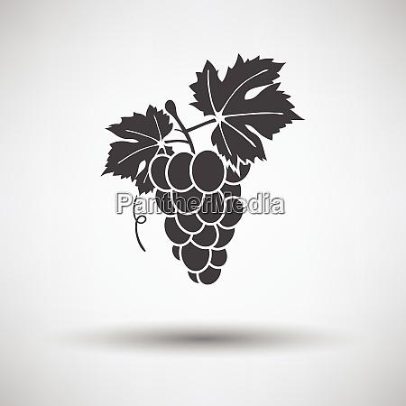 icon of grape icon of grape