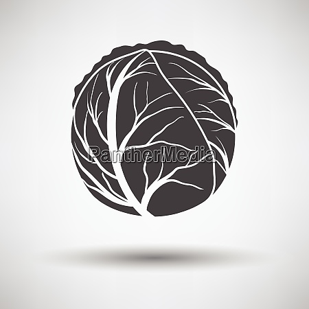 cabbage icon cabbage icon on gray
