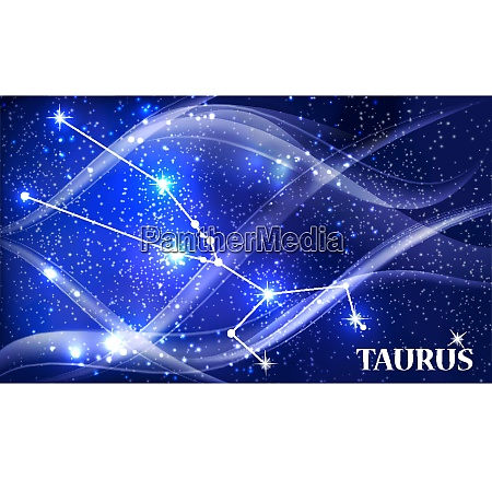 symbol taurus zodiac sign vector illustration
