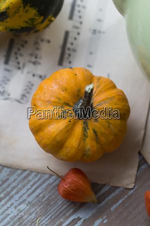 jesienna dekoracja z ozdobnymi dyniami i