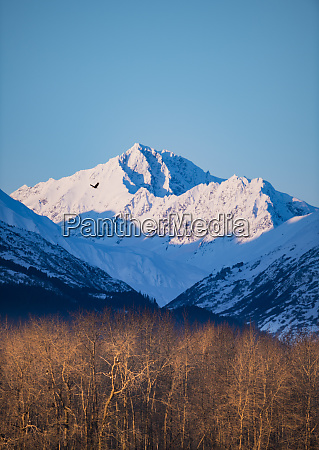 majestic landscape of snow covered mountain