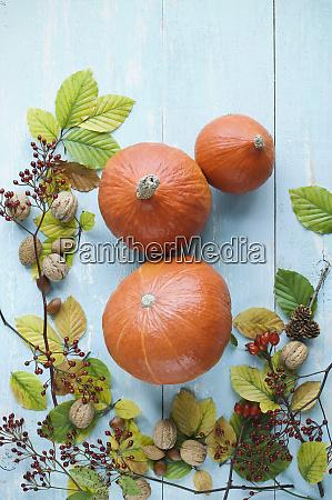 jesienny uklad z dyniami hokkaido orzechami