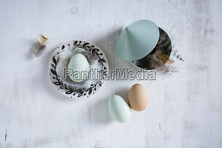 still, life, with, eggs, and, feathers - 26926911