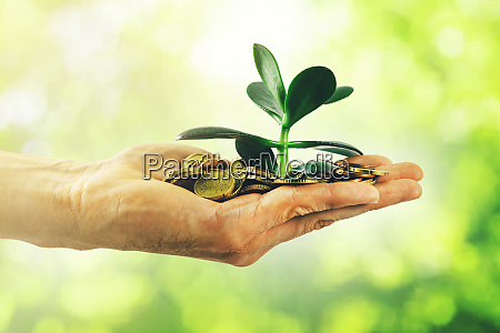 money growth and investment concept hand