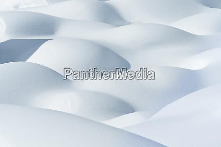 canada alberta jasper national park snow