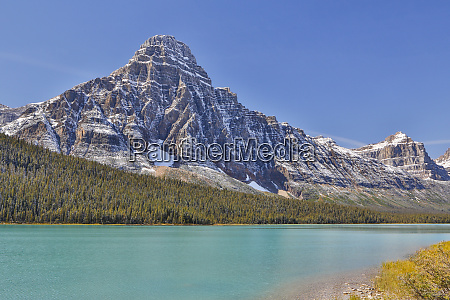 waterfowl lake and mt chephren with