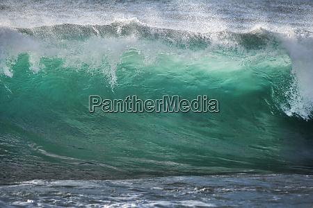 usa california la jolla shorebreak wave