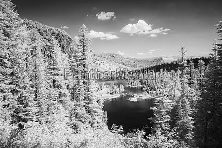 stany zjednoczone california mammoth lakes czarny