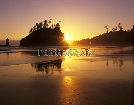 wa olympic np second beach at