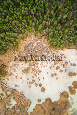 aerial view of forest surrounding frozen