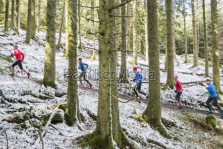 przyjaciele jogging w osniezonych lasach