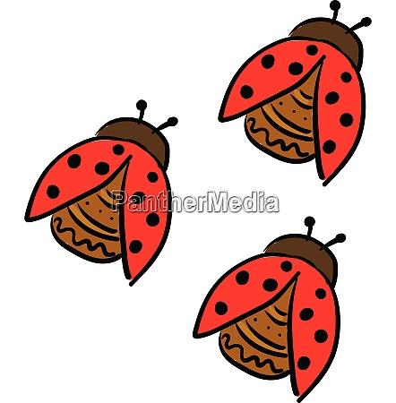 three cute little lady beetles vector