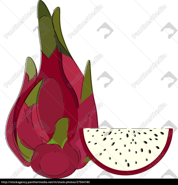 clipartów, całości, i, pół-cut, smoka, owoców - 27504180