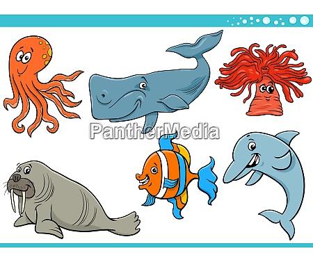 morze zycie kreskowka gatunkow zwierzat znakow