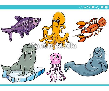 morskie zycie zwierzat gatunkow znakow zestaw